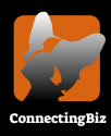 ConnectingBiz